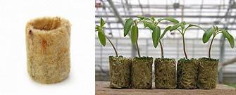 Интенсивное выращивание растений 68