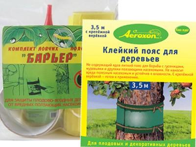 Ловчие пояса на плодовых деревьях от муравьев своими руками